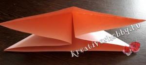 Papírlepke-füzér: alulnézet