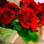 roses05 (1)