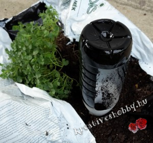 Kerti süni: átfestjük a műanyag flakont