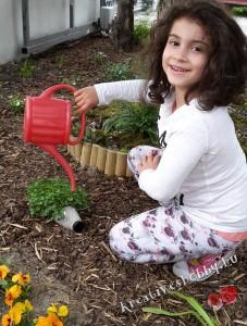 Kerti süni: belocsoljuk a növényt