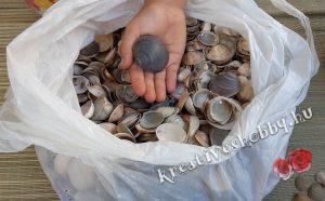 Kagylós kosárkák: kiválogatjuk a kagylókat
